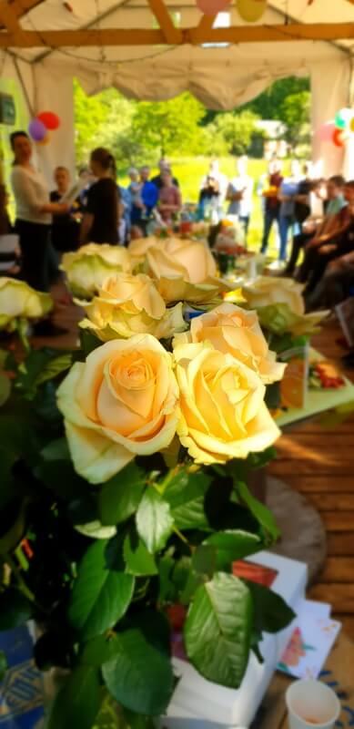Didelė rožių puokštė, padėka mokytojai